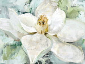 Morning Magnolia Canvas Art