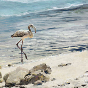 Shorebird Canvas Art
