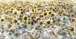 Sunflower Meadow Canvas Art