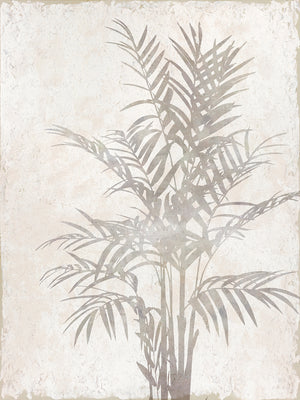 Foliage Shadow Canvas Art