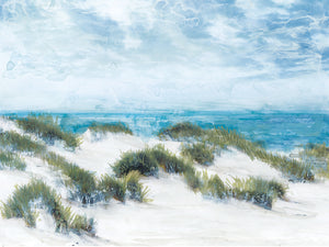 Among the Dunes Canvas Prints
