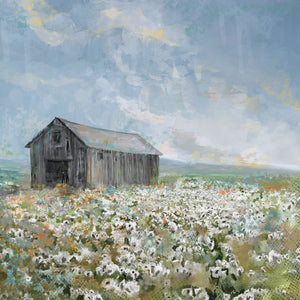 Barn with White Poppies Canvas Art