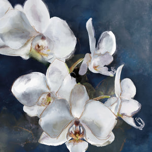 Orchid on Navy Canvas Art