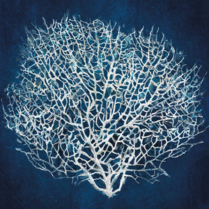 Sea Fan II Canvas Art