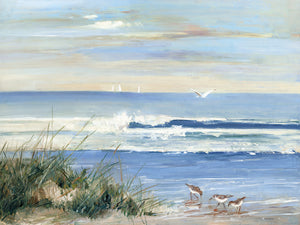 Beachcombers Canvas Art