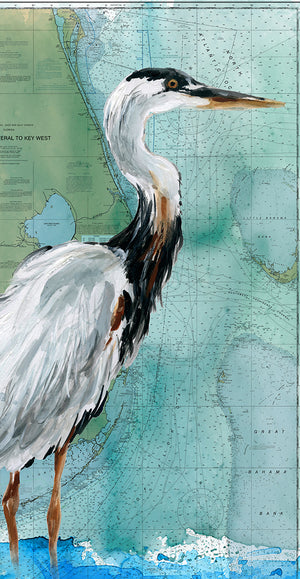 Key West Crane Canvas Art