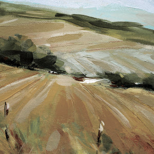 Summer Pasture Canvas Art