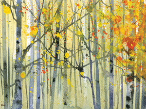 Autumn Birches Canvas Art