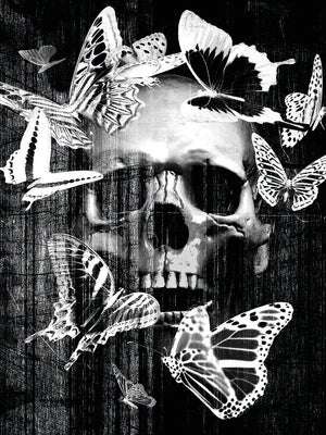 Skull Butterfly Crown Canvas Prints