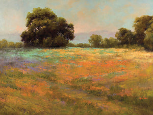 Spring Meadow Canvas Art