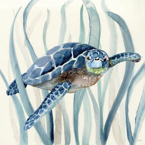 Turtle in Seagrass I Canvas Art