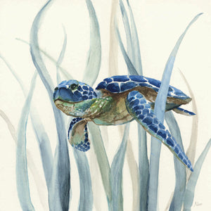 Turtle in Seagrass II Canvas Art
