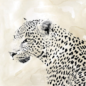 Leopard Spot II Canvas Art
