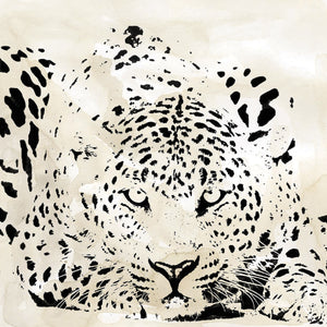 Leopard Spot III Canvas Art