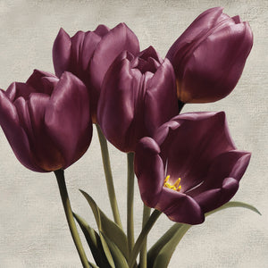 Royal Tulips Canvas Art