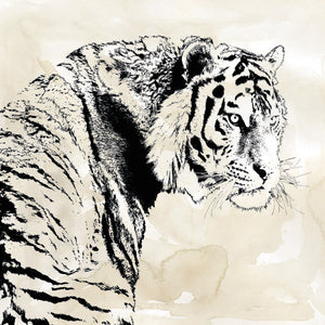 Tiger Stripes I Canvas Art