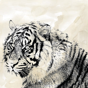 Tiger Stripes II Canvas Art