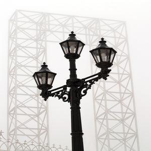 Lampost And Old City Hall Structure Canvas Art