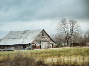 An Old Gray Barn Canvas Art