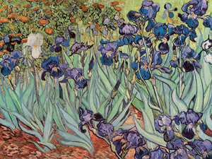 The Iris, 1889 Canvas Art