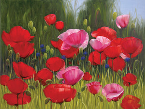 Red Poppies Canvas Art