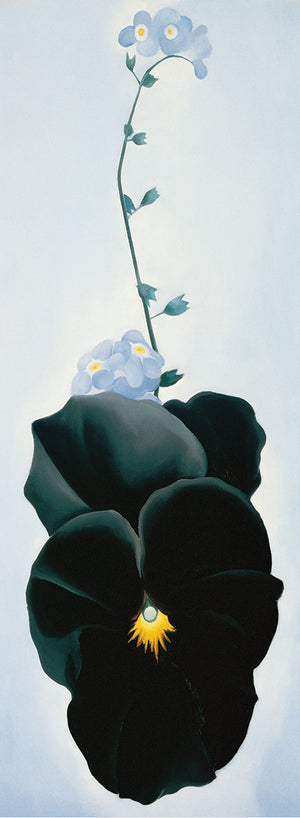 O'Keeffe - Pansy Canvas Print