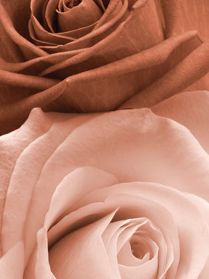 Sepia Roses in Portrait Canvas Art