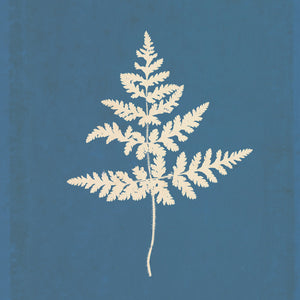 White Leaf on Blue 01 Canvas Art