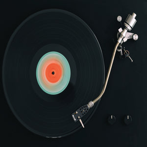 Spinning Record Canvas Art