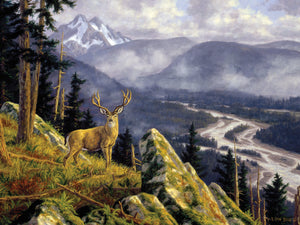 Above The South Fork Canvas Art