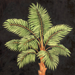 Parlor Palm I Canvas Art