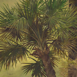 Sable Palm Canvas Art