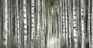 Birch Moment Grey Canvas Art