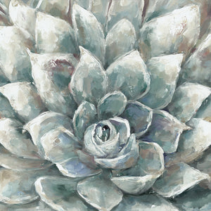 Cactus Bloom Ivory Square Canvas Art