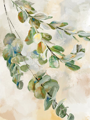 Eucalyptus II Canvas Art