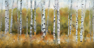 Autumn Aspens Canvas Art