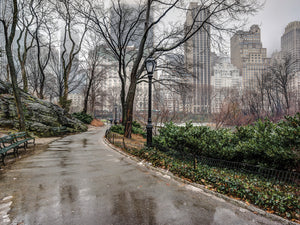 After the Rain Central Park Canvas Art