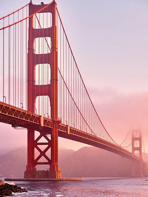 Morning Mist Golden Gate Canvas Art