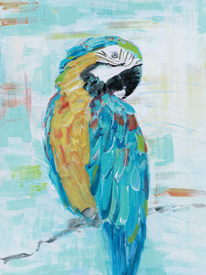 Island Parrot I Canvas Art