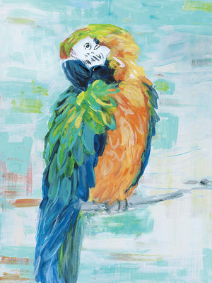 Island Parrot II Canvas Art