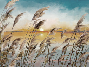 Morning Reeds Light Canvas Prints
