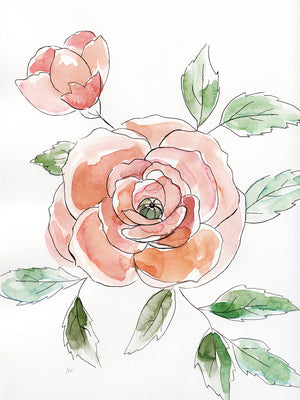 Rose Contour Canvas Print