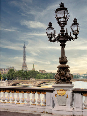 View of Eiffel Tower Canvas Print