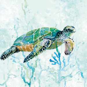 Sea Turtle Swim I Canvas Print