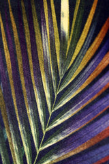 Close Up navy silver palm leaf tropical print luxury silk tencel covered notebook by leila Vibert-Stokes