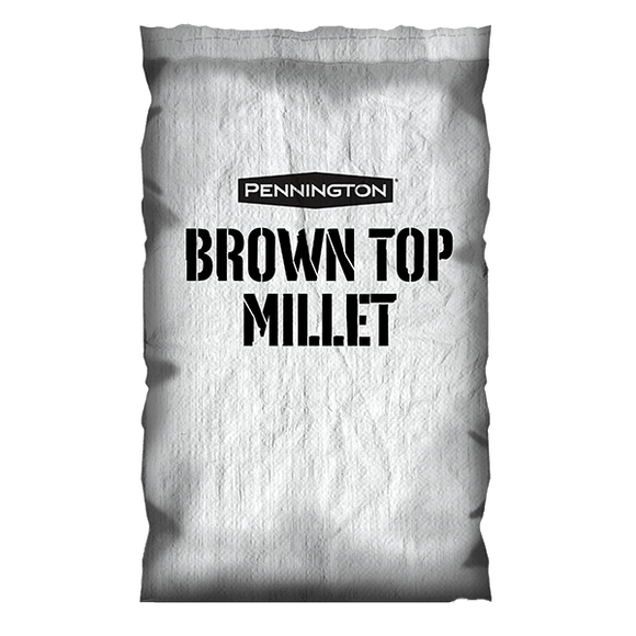 Millet, Brown Top Seed, 50lb