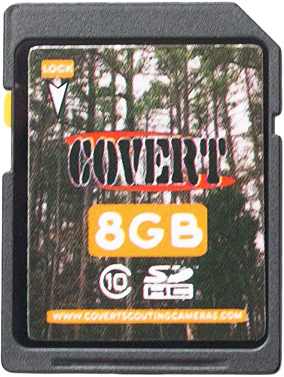 Covert SD Cards