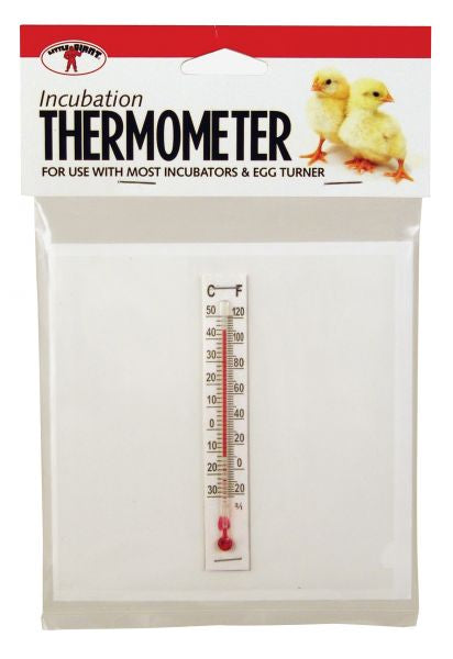 Little Giant Thermometer Incubation