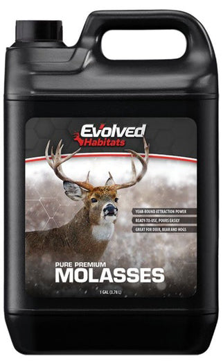 Molasses, 1gal