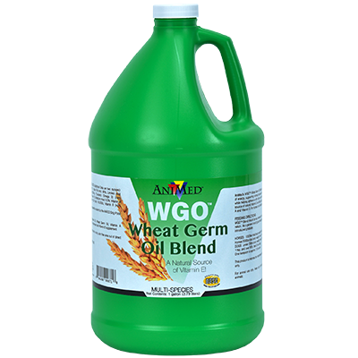 WGO Wheat Germ Oil Blend, 1gal